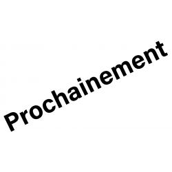 Porte-clé Olympique Lyonnais